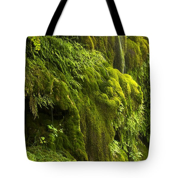 Tote Bag featuring the photograph Waterfall In Green by Bryan Keil
