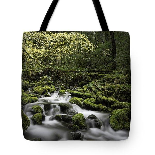 Waterfall In The Fall Tote Bag