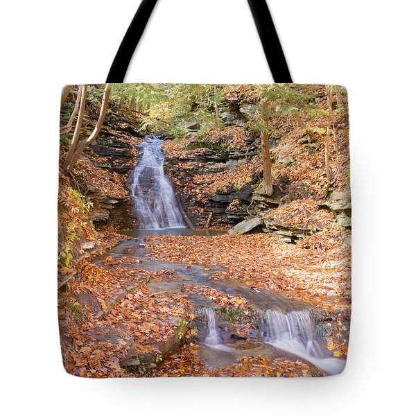 Waterfall In The Fall Tote Bag