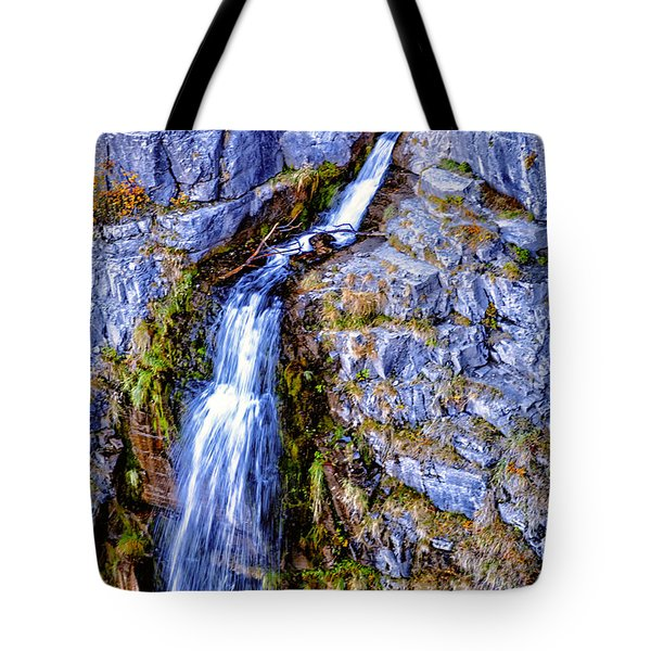Waterfall-mt Timpanogos Tote Bag by David Millenheft
