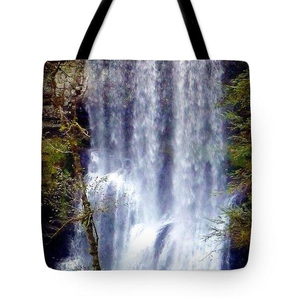 Waterfall South Tote Bag by Susan Garren