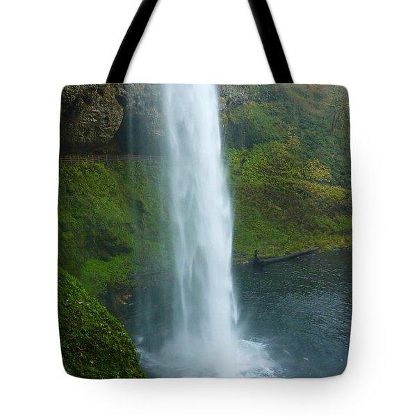 Waterfall View Tote Bag by Susan Garren