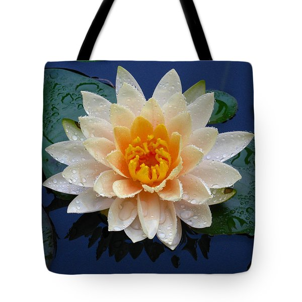 Waterlily After A Shower Tote Bag by Raymond Salani III