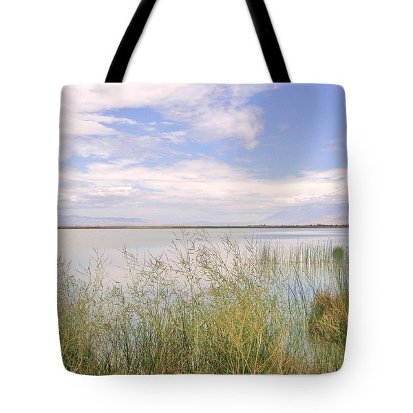 Tote Bag featuring the photograph Waterworks by Marilyn Diaz