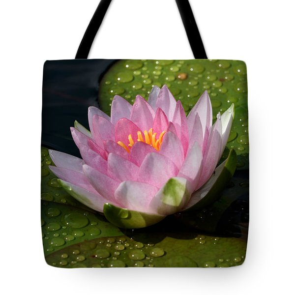 Watery Lily Tote Bag