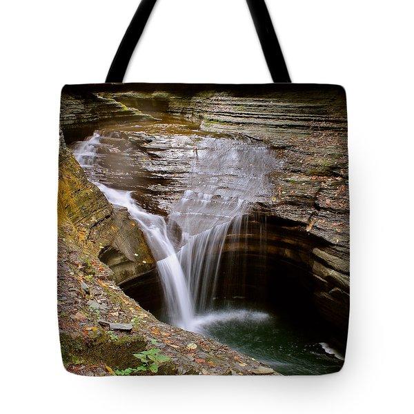 Watkins Glen Pool Tote Bag