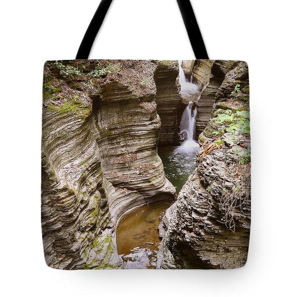 Watkins Glen Curves  Tote Bag