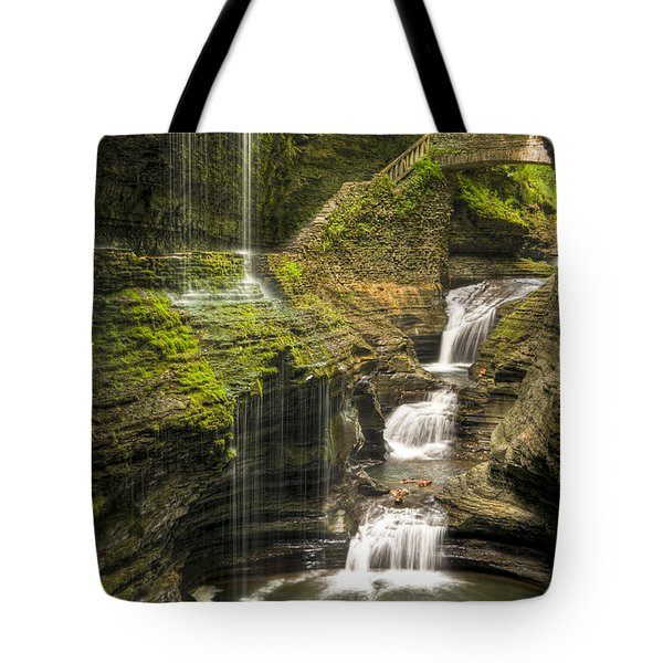 Watkins Glen Falls Tote Bag by Anthony Sacco