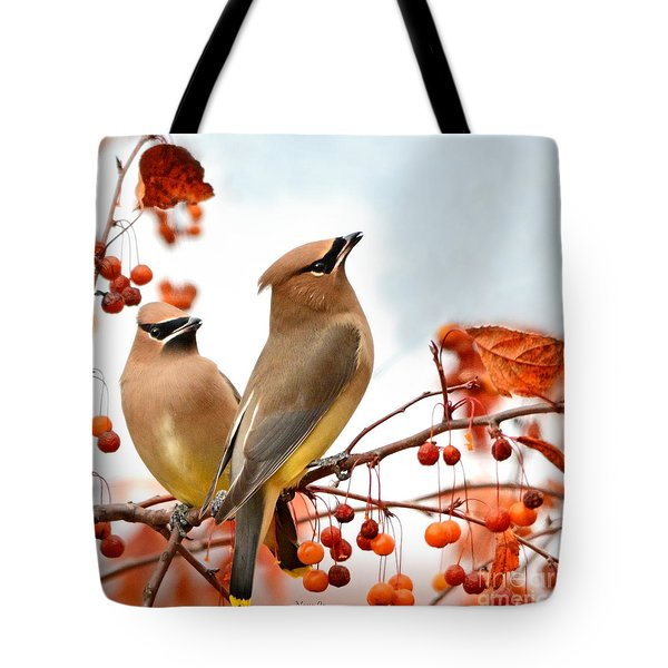 Beautiful Waxwing  Tote Bag