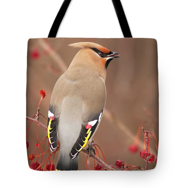 Waxwing In Winter Tote Bag by Mircea Costina Photography