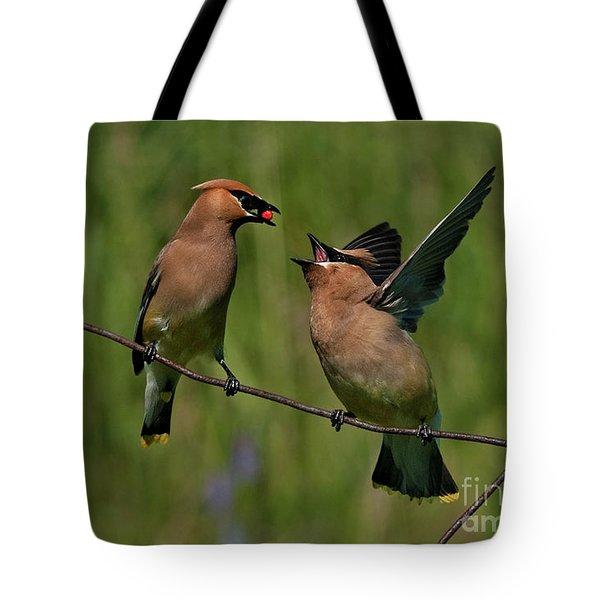 Waxwing Love.. Tote Bag