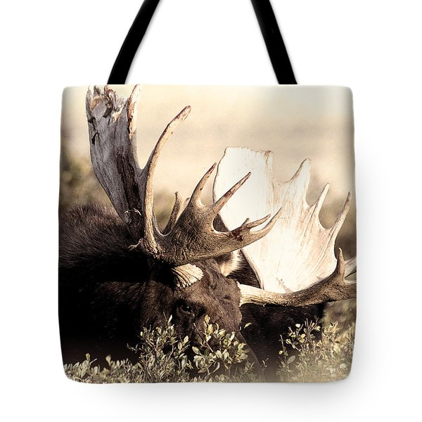 Wear A Crown Tote Bag