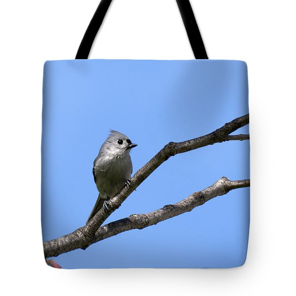 Weary Wings Tote Bag by Christina Rollo
