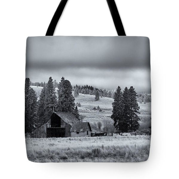 Weathered Beneath The Storm Tote Bag by Mike  Dawson