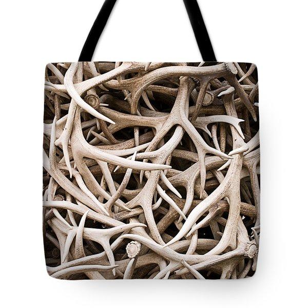 Weathered Elk Antlers Tote Bag
