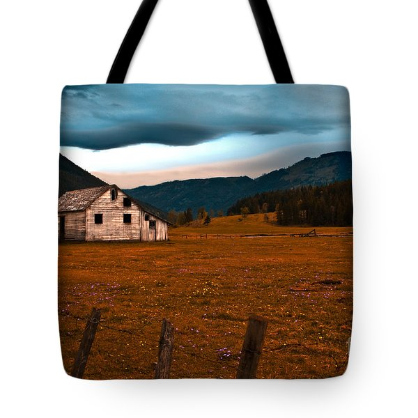 Weathered Tote Bag by Sandi Mikuse