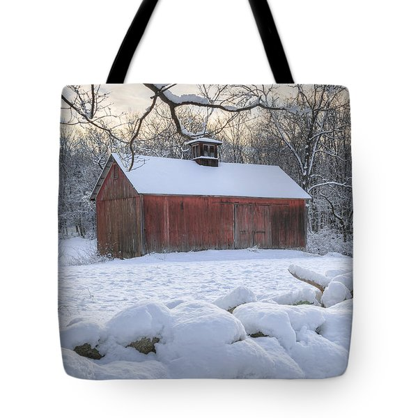 Weathering Winter Tote Bag by Bill Wakeley