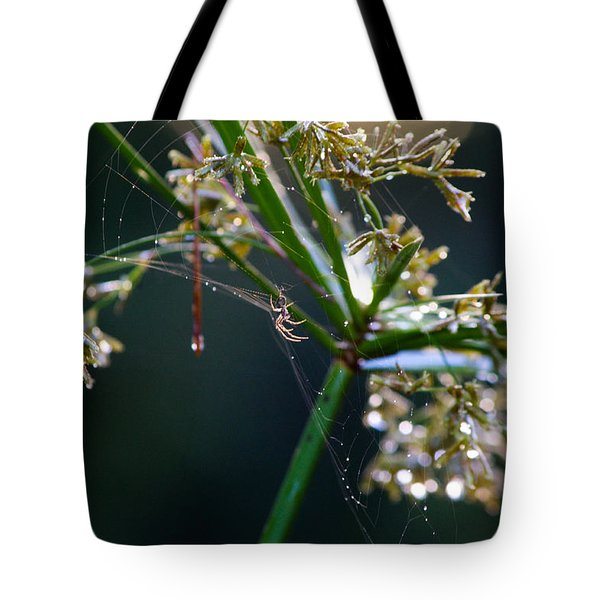 Web After The Rain Tote Bag by Adria Trail