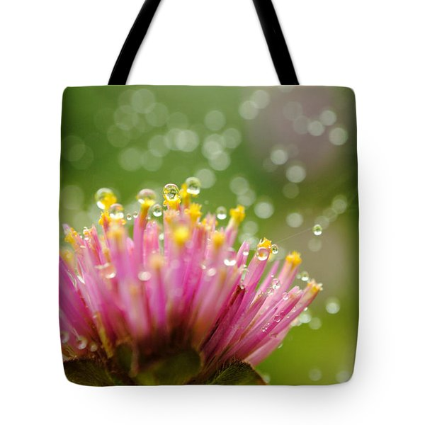 Webs And Water Whimsy Tote Bag