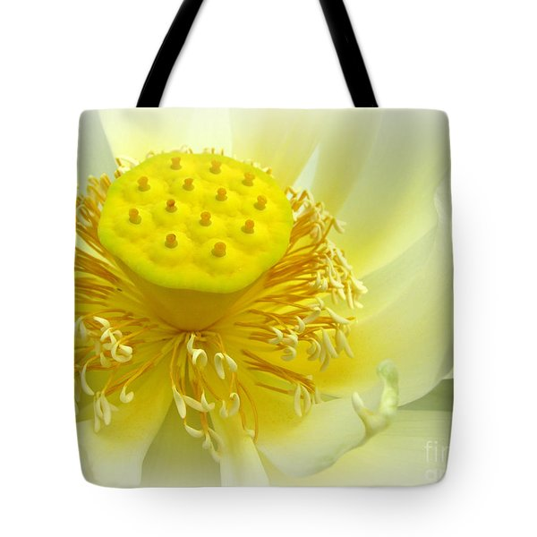 Tranquil Beginnings Tote Bag