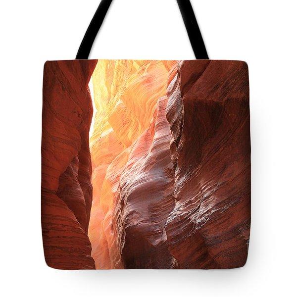 Wedge Of Light Tote Bag