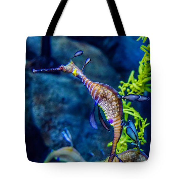 Weedy Seadragon Tote Bag