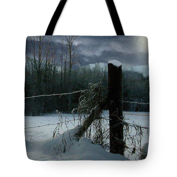 Weeping Winter Moon Tote Bag by RC deWinter