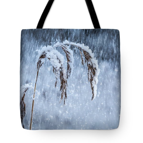 Weight Of Winter Tote Bag by Janne Mankinen