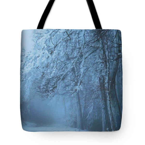 Welcoming The Light Tote Bag
