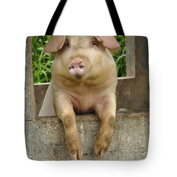 Well Hello There Tote Bag by Bob Christopher
