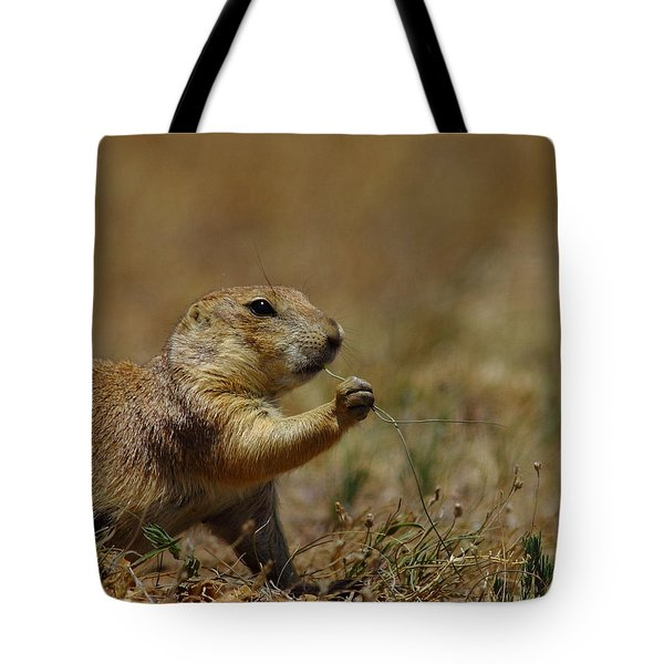 Well I Reckon So Tote Bag by Robert Frederick