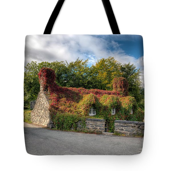 Welsh Cottage Tote Bag by Adrian Evans