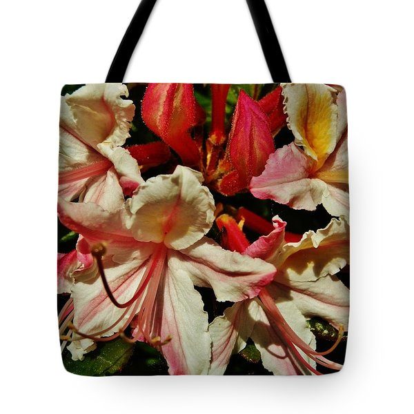 Tote Bag featuring the photograph Western Azalea by VLee Watson