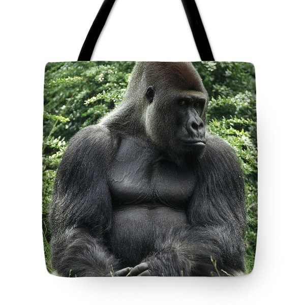 Western Lowland Gorilla Male Tote Bag by Konrad Wothe