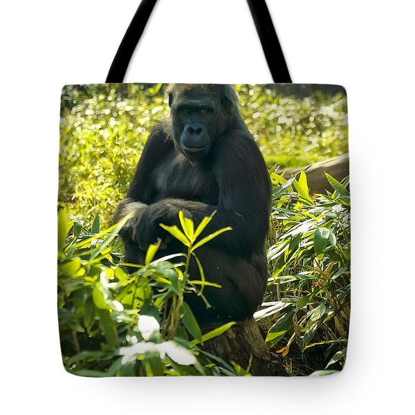 Western Lowland Gorilla Sitting On A Tree Stump Tote Bag by Chris Flees