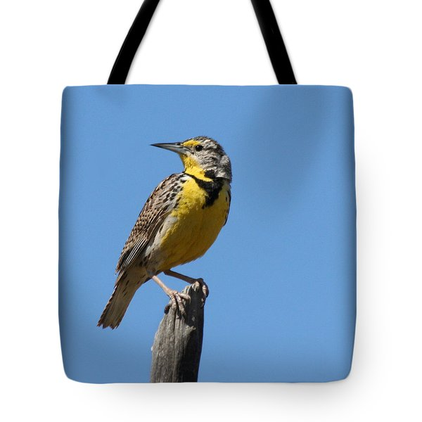 Tote Bag featuring the photograph Western Meadowlark Perching by Bob and Jan Shriner