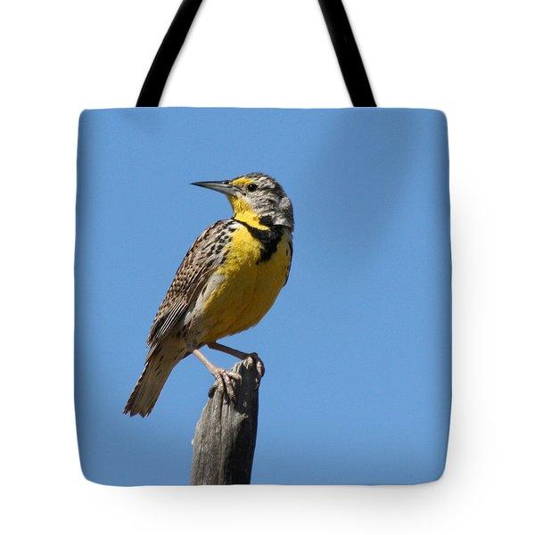 Western Meadowlark Perching Tote Bag by Bob and Jan Shriner