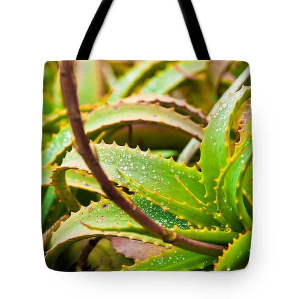 After The Rain Tote Bag by Melinda Ledsome