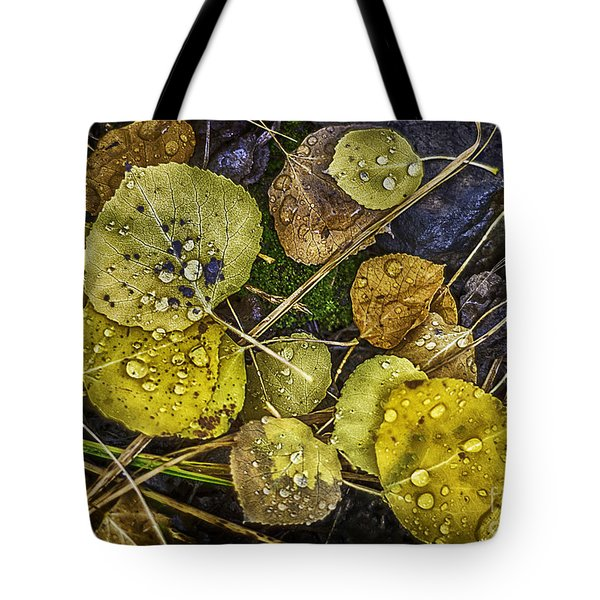 Tote Bag featuring the photograph Wet Aspen Floor by Bitter Buffalo Photography