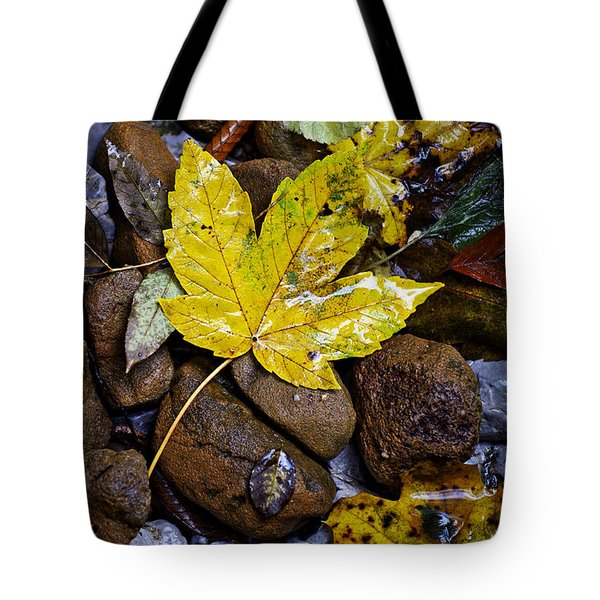 Wet Autumn Leaf On Stones Tote Bag