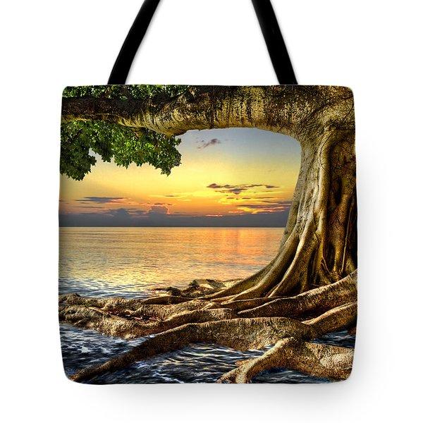 Wet Dreams Tote Bag by Debra and Dave Vanderlaan