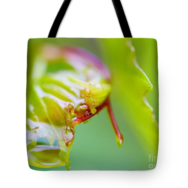 Wet Grape Leaf  Tote Bag