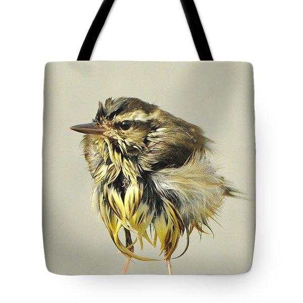 Wet Warbler Tote Bag