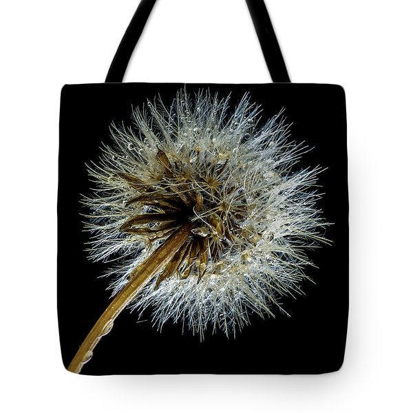 Wet Weed Tote Bag by Jean Noren