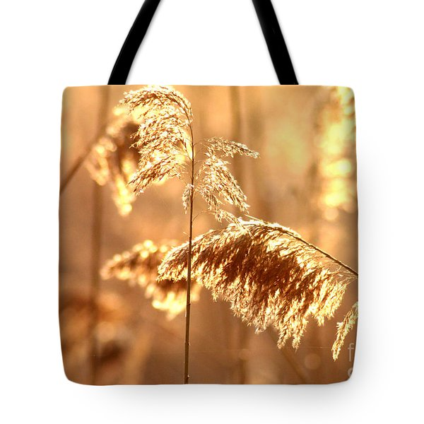 Wetland Sunrise Tote Bag by Kenny Glotfelty