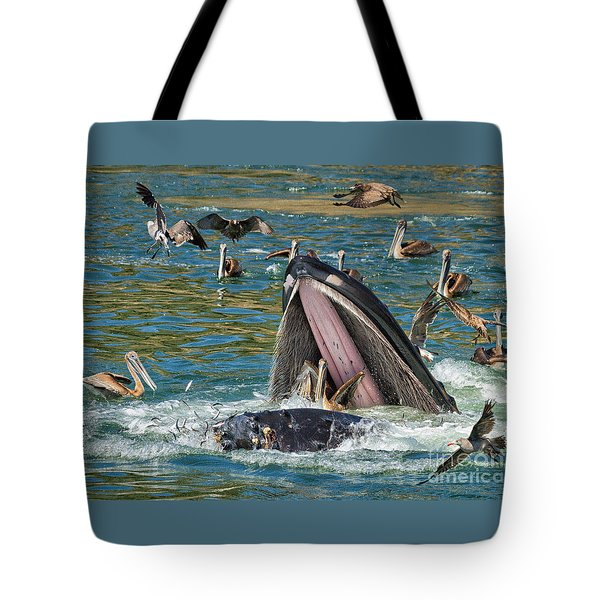 Whale Almost Eating A Pelican Tote Bag by Alice Cahill