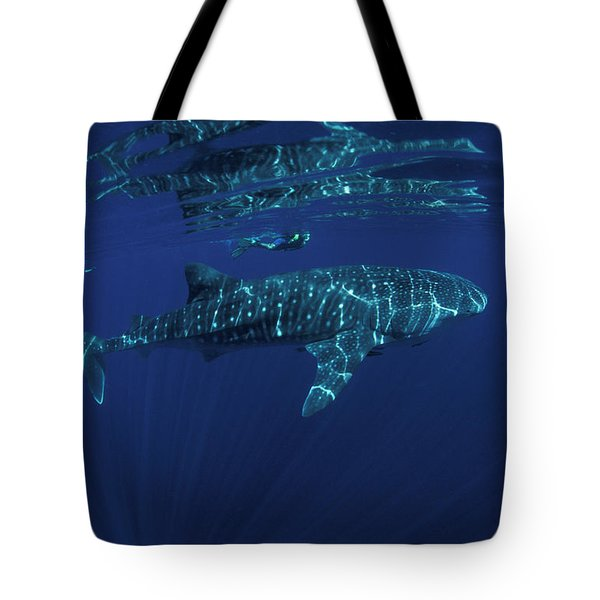 Whale Shark And Snorkler, Rhincodon Tote Bag