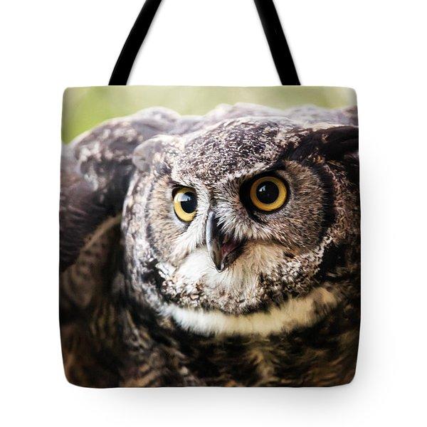 What A Hoot Tote Bag