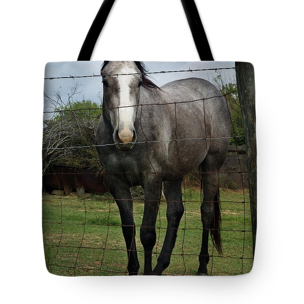 Tote Bag featuring the photograph What Are You Afraid Of by Peter Piatt