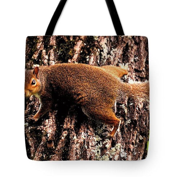 What Are You Looking At Tote Bag by Tara Potts